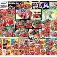 【ドラゴン祭!】2011年5月27日(金)~5月29日(日)