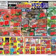 【ドラゴン祭!】2011年6月24日(金)~6月26日(日)