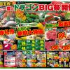 【6月大目玉市】月に一度のBIG祭開催!