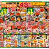 【11月大目玉市】月に一度のBIG祭開催!