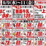 【2015年9月9日~9月11日週の真ん中大売出し!】
