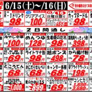 【2019年6月15日~6月16日月中特売!】
