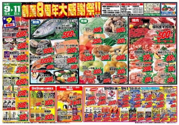 ドラゴン広告チラシ20110909表800