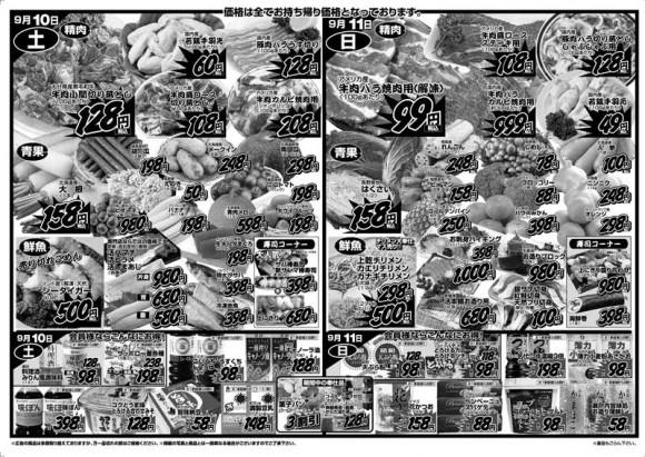 ドラゴン広告チラシ20110909裏800