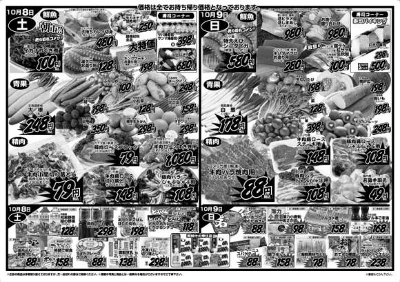 ドラゴン広告チラシ20111007裏800