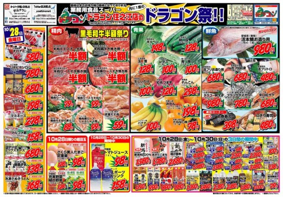 ドラゴン広告チラシ20111028表800