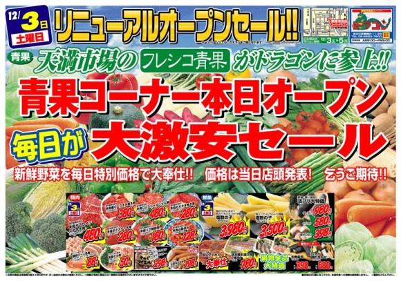 ドラゴン広告チラシ20111203表800