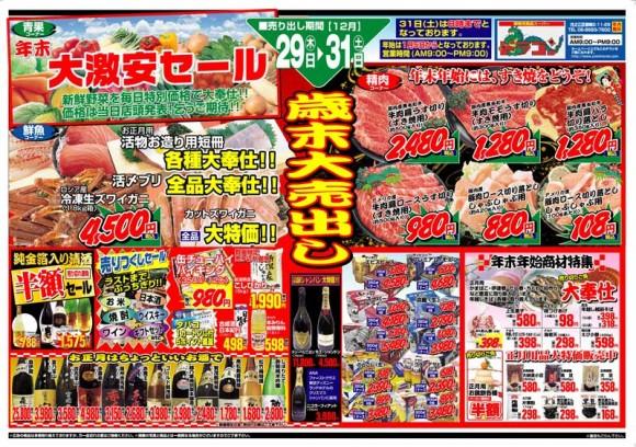ドラゴン広告チラシ20111229表800