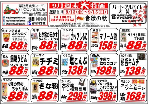 ドラゴン広告チラシ20130913裏800