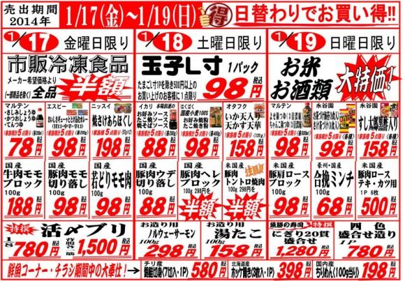 ドラゴン広告チラシ20140117表800