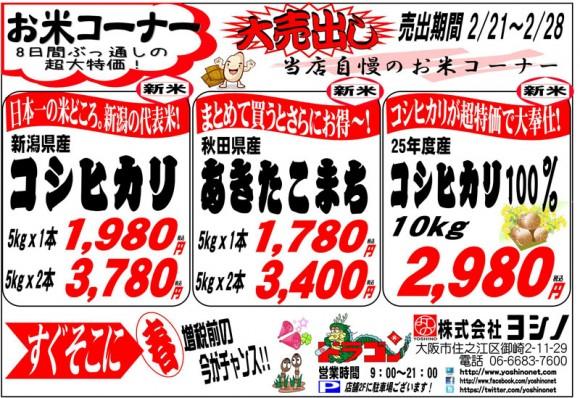 ドラゴン広告チラシ20140221裏800