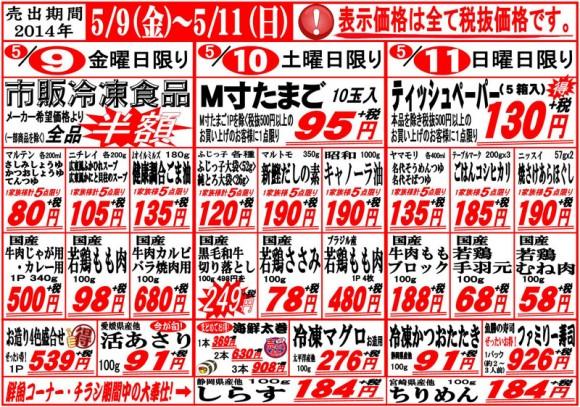 ドラゴン広告チラシ20140509表800