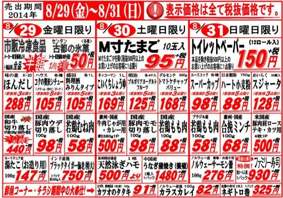 ドラゴン広告チラシ20140826表800