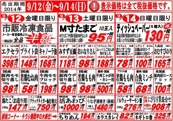 ドラゴン広告チラシ20140912表800