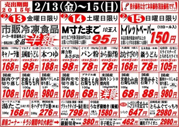 ドラゴン広告チラシ20150213表800
