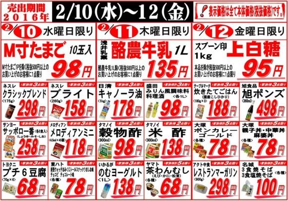 ドラゴン広告チラシ20160210裏800