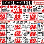【2019年2月16日~2月17日月中大特価!】